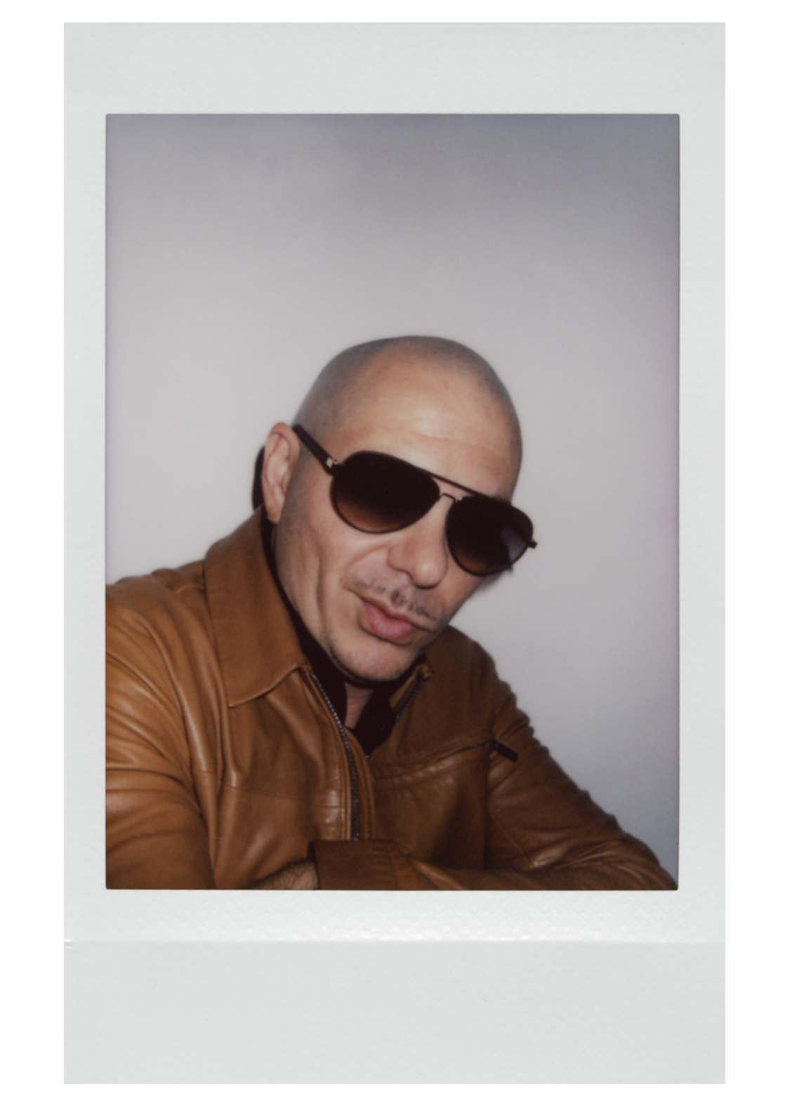 Michael Greenberg Photography- Pitbull